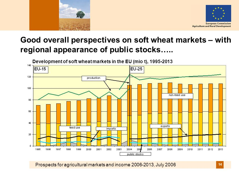 Prospects for agricultural markets and income 2006-2013, July 2006 14 Good overall perspectives on soft wheat markets – with regional appearance of public stocks…..