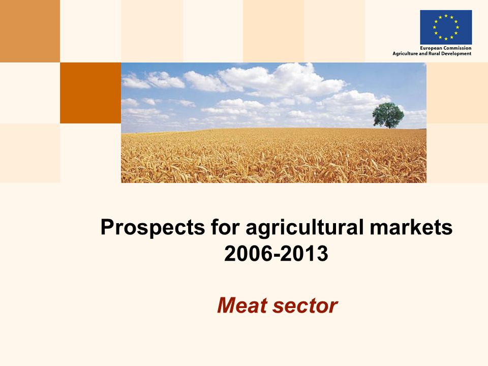 Prospects for agricultural markets 2006-2013 Meat sector