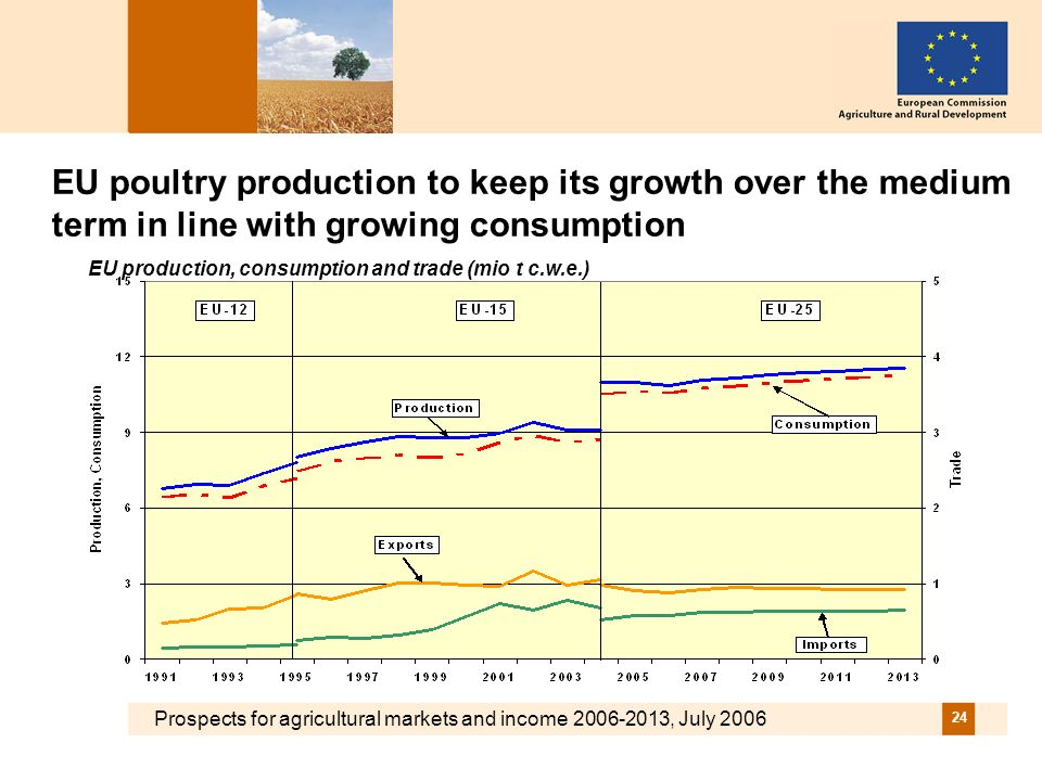 Prospects for agricultural markets and income 2006-2013, July 2006 24 EU poultry production to keep its growth over the medium term in line with growing consumption EU production, consumption and trade (mio t c.w.e.)