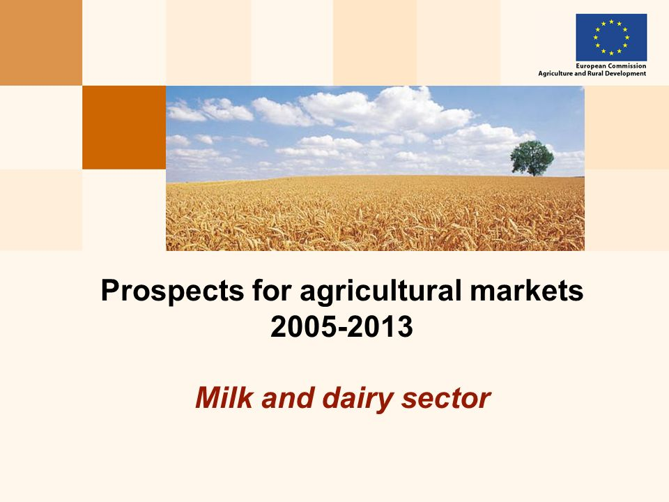 Prospects for agricultural markets 2005-2013 Milk and dairy sector