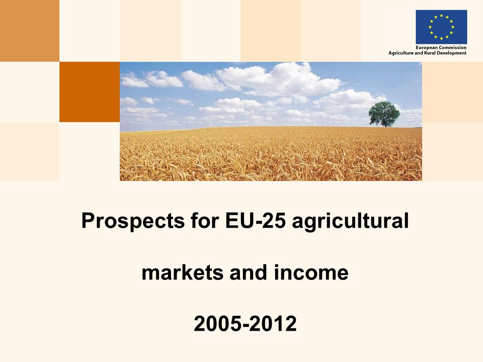 Prospects for agricultural markets and income 2005-2012, July 2005 12 Prospects remain conditional on exchange rate environment: asymmetric risks Cereal stocks in the EU under different exchange rate assumptions (mio t)