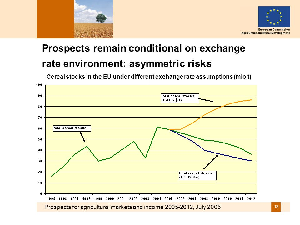Prospects for agricultural markets and income 2005-2012, July 2005 12 Prospects remain conditional on exchange rate environment: asymmetric risks Cere
