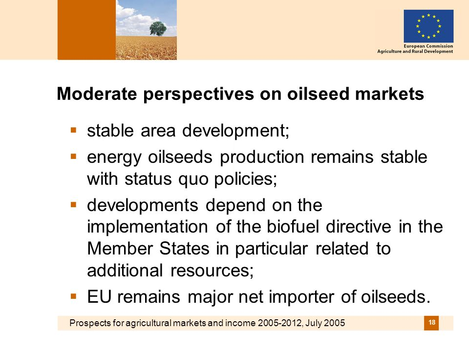 Prospects for agricultural markets and income 2005-2012, July 2005 18 Moderate perspectives on oilseed markets stable area development; energy oilseeds production remains stable with status quo policies; developments depend on the implementation of the biofuel directive in the Member States in particular related to additional resources; EU remains major net importer of oilseeds.