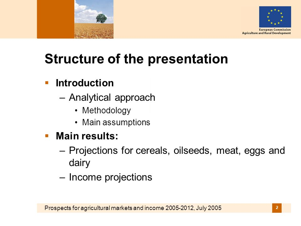 Prospects for agricultural markets and income 2005-2012, July 2005 2 Structure of the presentation Introduction –Analytical approach Methodology Main assumptions Main results: –Projections for cereals, oilseeds, meat, eggs and dairy –Income projections