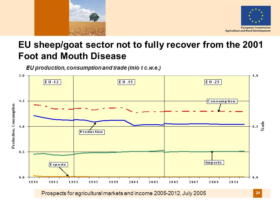 Prospects for agricultural markets and income 2005-2012, July 2005 24 EU sheep/goat sector not to fully recover from the 2001 Foot and Mouth Disease E