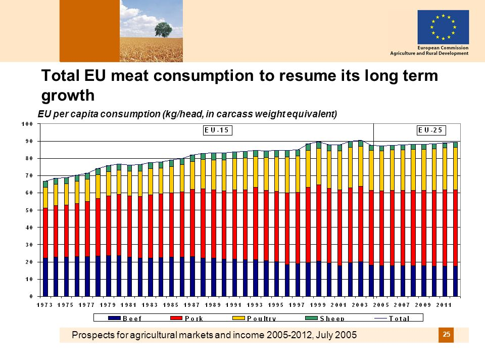 Prospects for agricultural markets and income 2005-2012, July 2005 25 Total EU meat consumption to resume its long term growth EU per capita consumpti