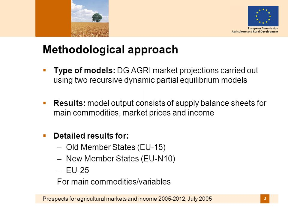 Prospects for agricultural markets and income 2005-2012, July 2005 3 Methodological approach Type of models: DG AGRI market projections carried out using two recursive dynamic partial equilibrium models Results: model output consists of supply balance sheets for main commodities, market prices and income Detailed results for: –Old Member States (EU-15) –New Member States (EU-N10) –EU-25 For main commodities/variables