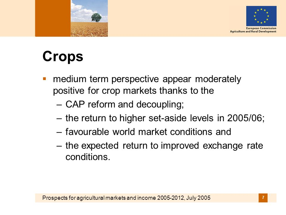 Prospects for agricultural markets and income 2005-2012, July 2005 8 Slightly expanding cereal markets….