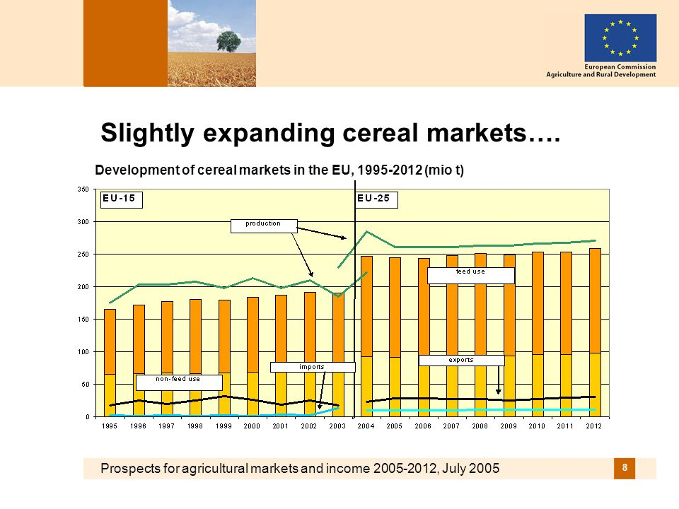 Prospects for agricultural markets and income 2005-2012, July 2005 8 Slightly expanding cereal markets…. Development of cereal markets in the EU, 1995