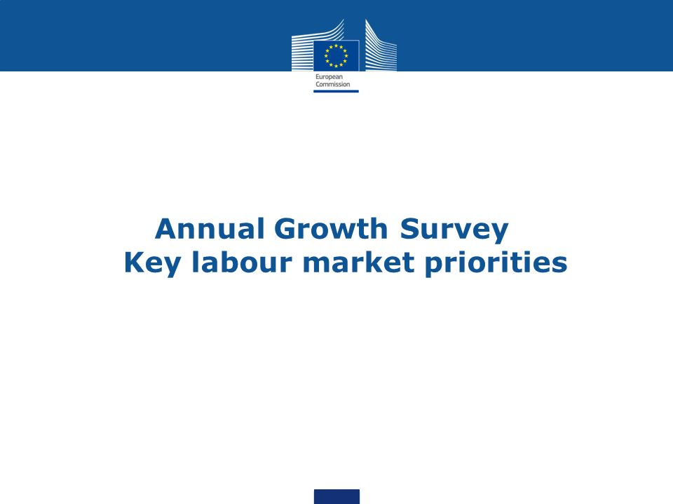 Annual Growth Survey Key labour market priorities