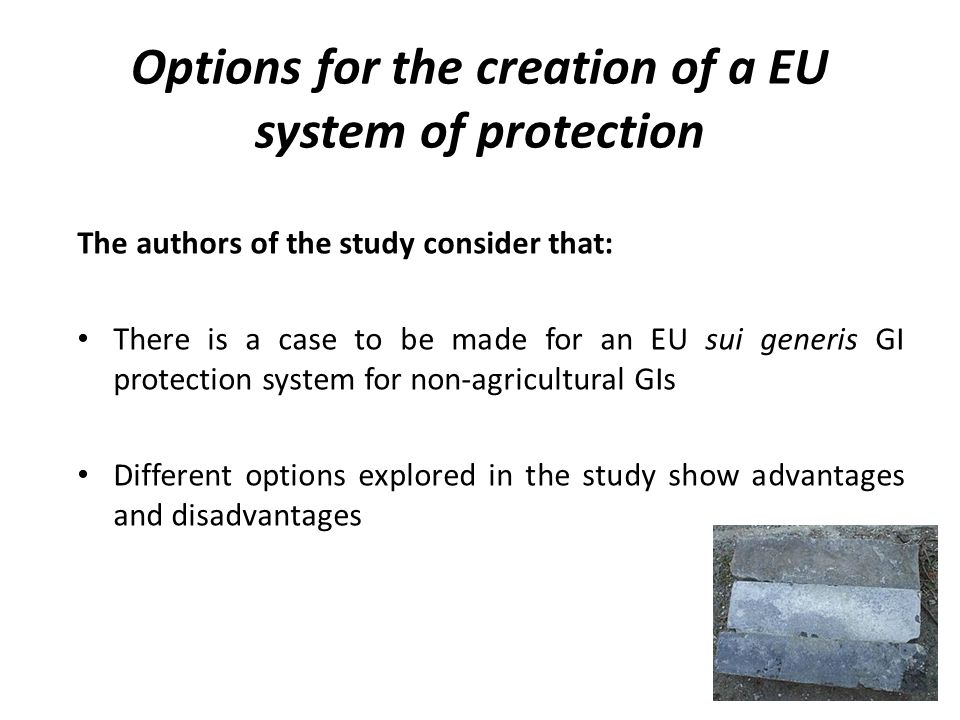 Options for the creation of a EU system of protection The authors of the study consider that: There is a case to be made for an EU sui generis GI protection system for non-agricultural GIs Different options explored in the study show advantages and disadvantages