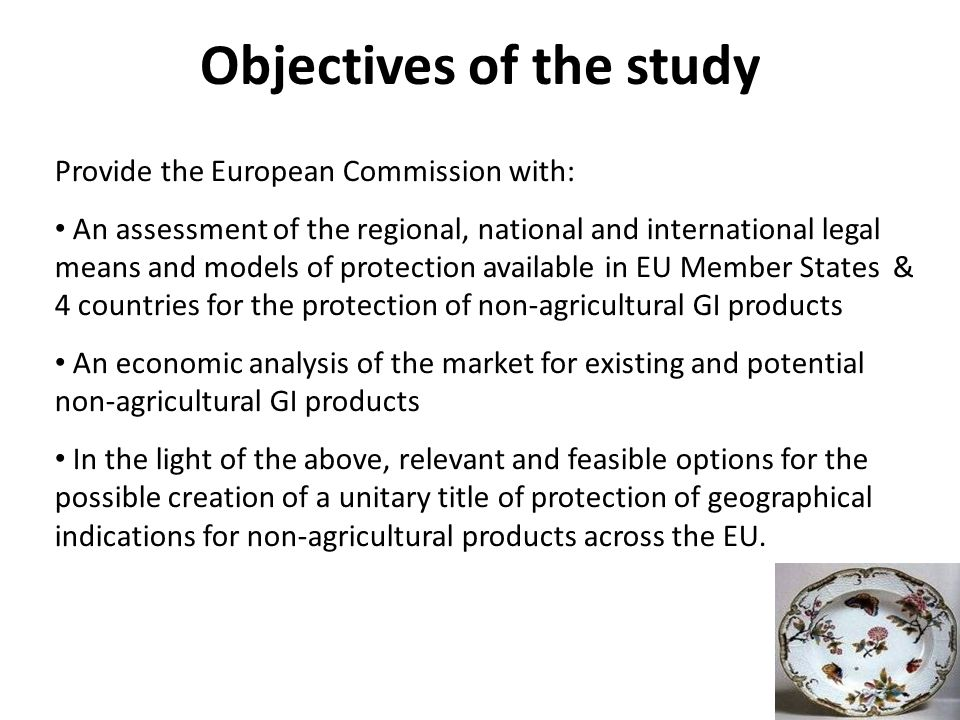 Provide the European Commission with: An assessment of the regional, national and international legal means and models of protection available in EU Member States & 4 countries for the protection of non-agricultural GI products An economic analysis of the market for existing and potential non-agricultural GI products In the light of the above, relevant and feasible options for the possible creation of a unitary title of protection of geographical indications for non-agricultural products across the EU.
