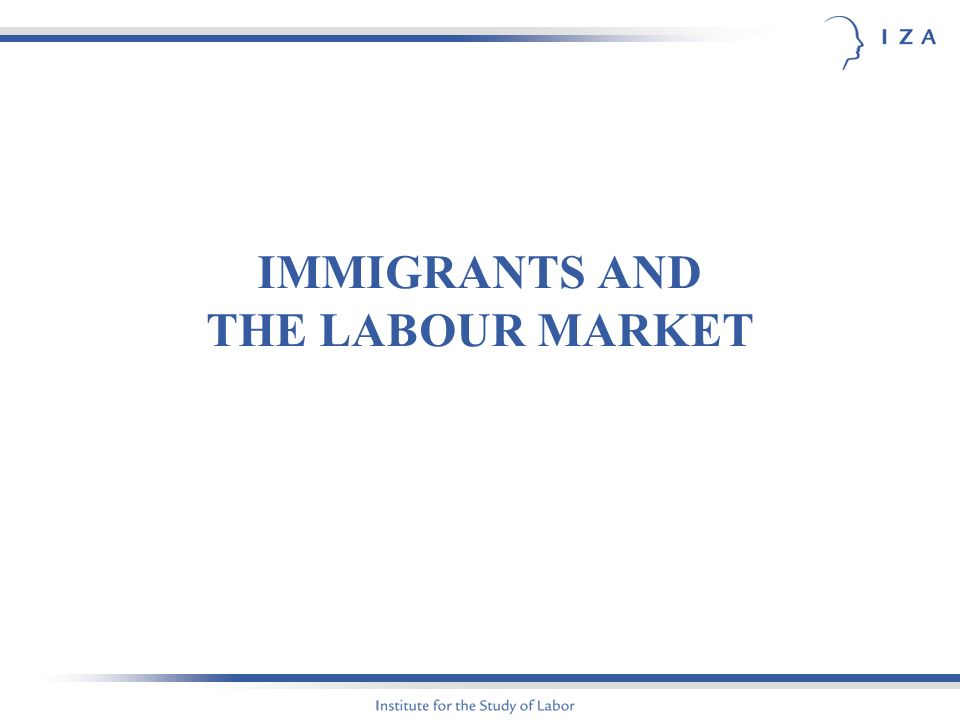 IMMIGRANTS AND THE LABOUR MARKET