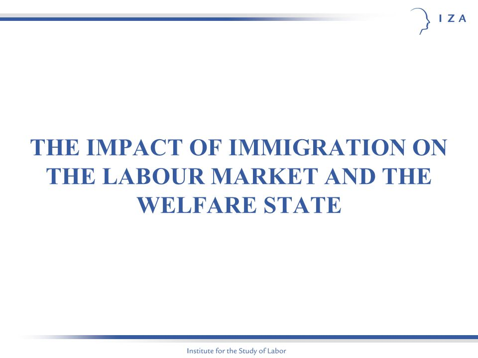 THE IMPACT OF IMMIGRATION ON THE LABOUR MARKET AND THE WELFARE STATE