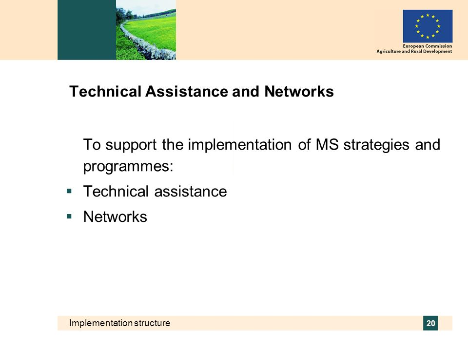 Implementation structure 20 Technical Assistance and Networks To support the implementation of MS strategies and programmes: Technical assistance Netw