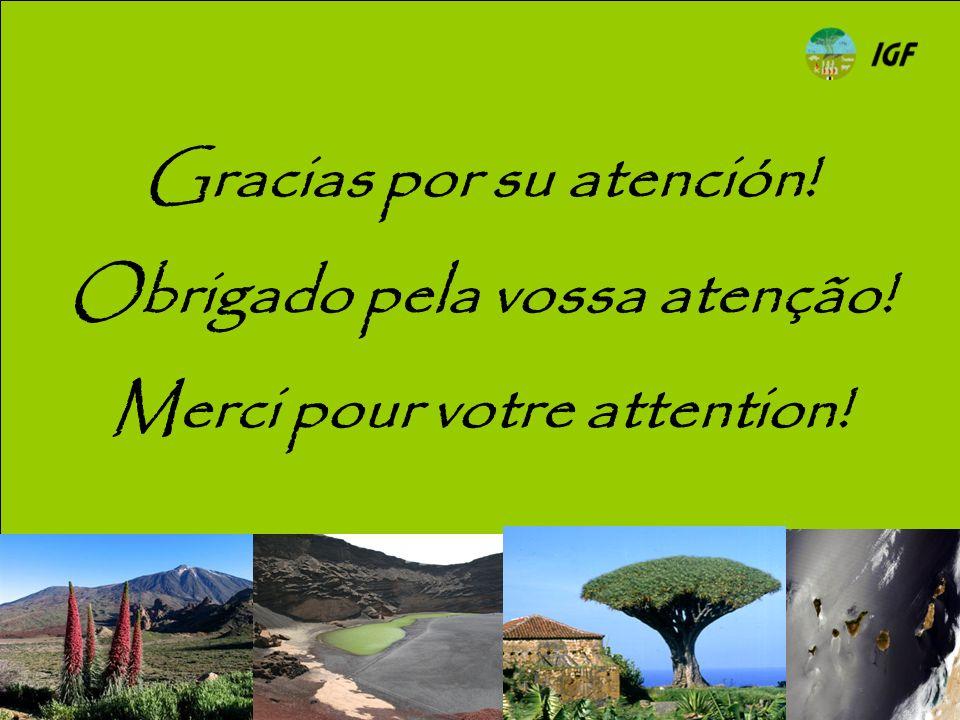 Gracias por su atención! Obrigado pela vossa atenção! Merci pour votre attention!