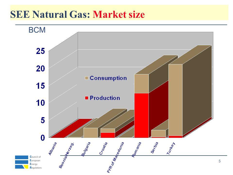 6 SEE Natural Gas: Consumption