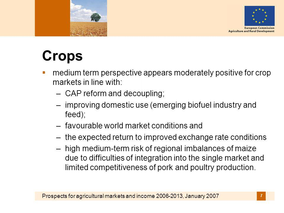 Prospects for agricultural markets and income 2006-2013, January 2007 18 Sugar markets: Large gains in competitiveness to be reached over the medium term…… Development of sugar markets in the EU (mio t), 2002-2013