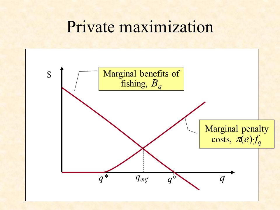 Private maximization $ q q* Marginal benefits of fishing, B q Marginal penalty costs, (e) f q q enf q°