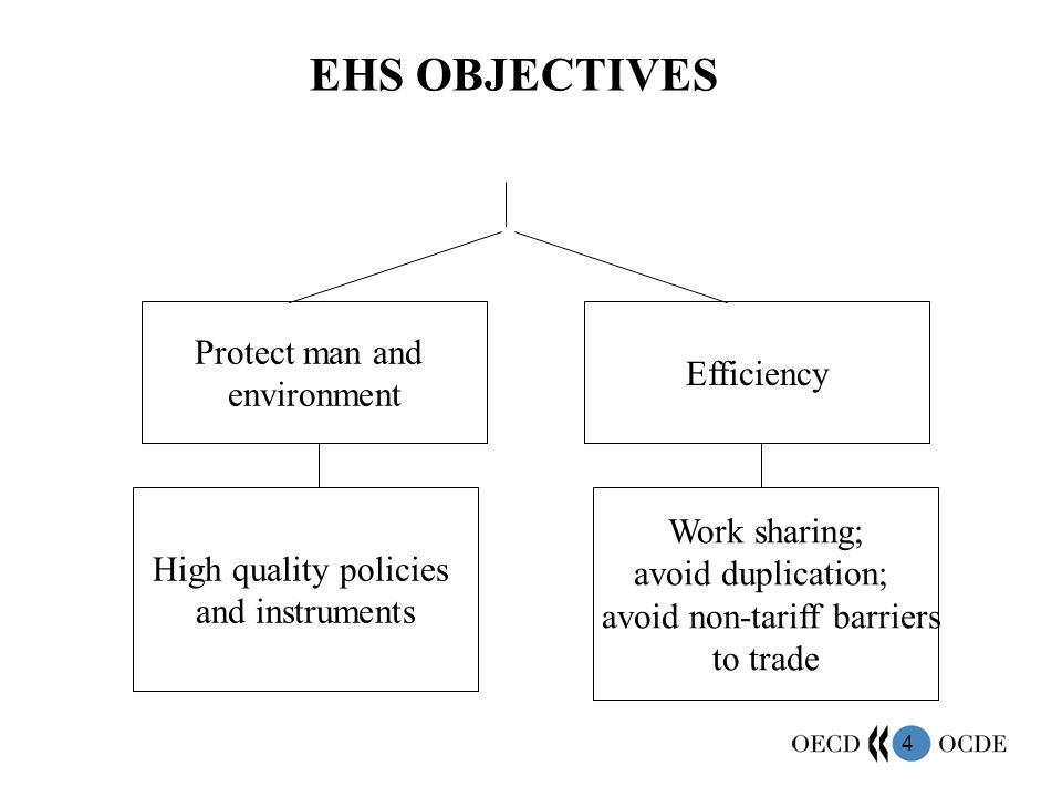 4 EHS OBJECTIVES Protect man and environment Efficiency High quality policies and instruments Work sharing; avoid duplication; avoid non-tariff barriers to trade
