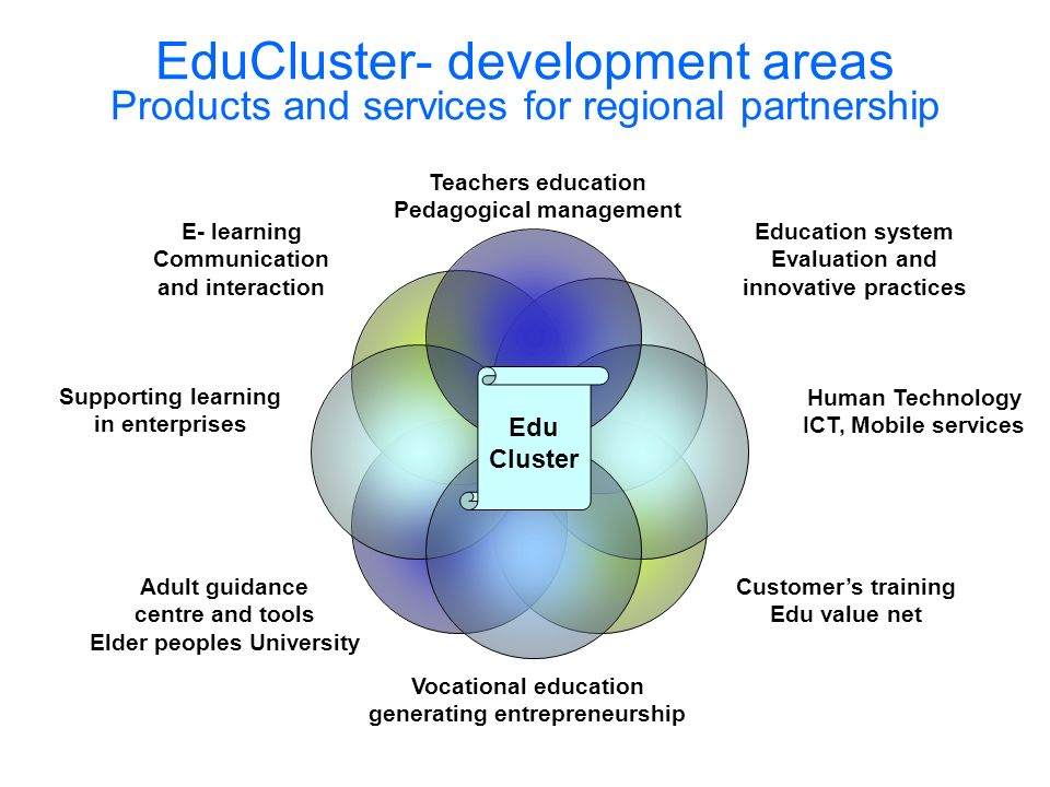 EduCluster- development areas Products and services for regional partnership Teachers education Pedagogical management Education system Evaluation and innovative practices Human Technology ICT, Mobile services Customers training Edu value net Vocational education generating entrepreneurship Adult guidance centre and tools Elder peoples University Supporting learning in enterprises E- learning Communication and interaction Edu Cluster