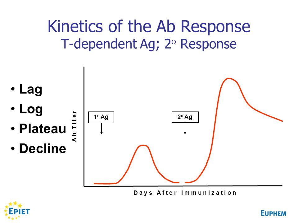 Kinetics of the Ab Response T-dependent Ag; 2 o Response Lag Log Plateau Decline 1 o Ag 2 o Ag D a y s A f t e r I m m u n i z a t i o n A b T i t e r