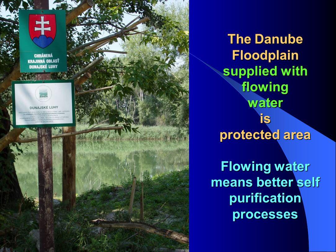 Gabčíkovo stretch Gabčíkovo stretch Cross section Protected Inundation Main Synergies: Flood protection Navigation Water supply Energy Nature protecti