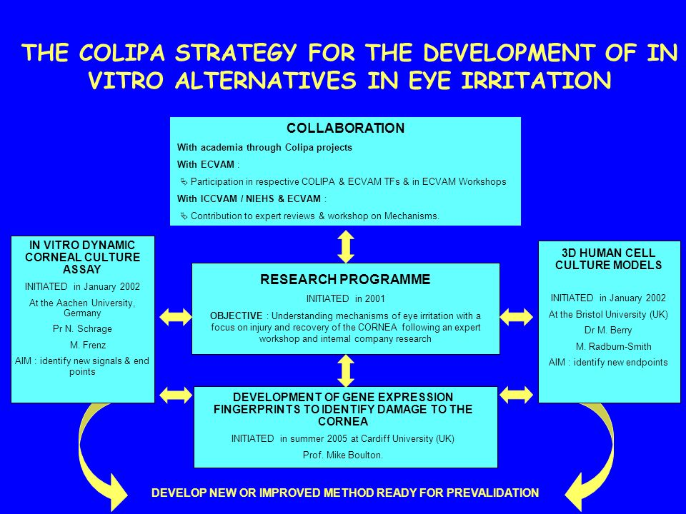 THE COLIPA STRATEGY FOR THE DEVELOPMENT OF IN VITRO ALTERNATIVES IN EYE IRRITATION COLLABORATION With academia through Colipa projects With ECVAM : Pa