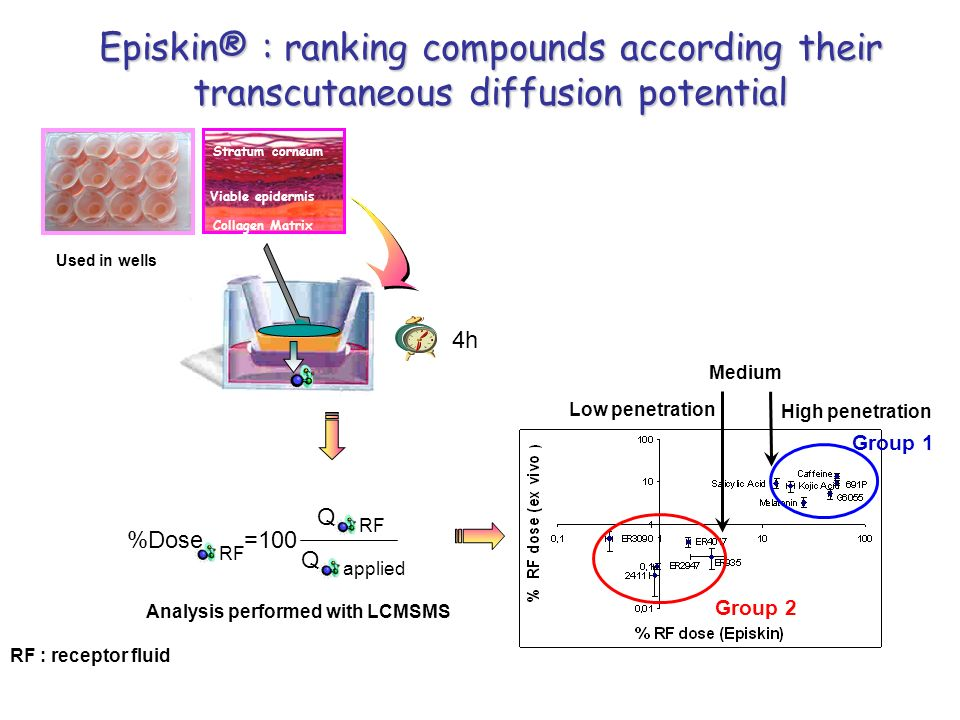 Episkin® : ranking compounds according their transcutaneous diffusion potential Used in wells Stratum corneum Viable epidermis Collagen Matrix 4h Grou