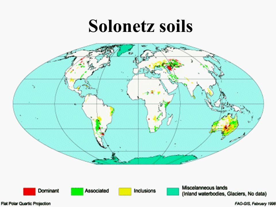 Solonetz soils