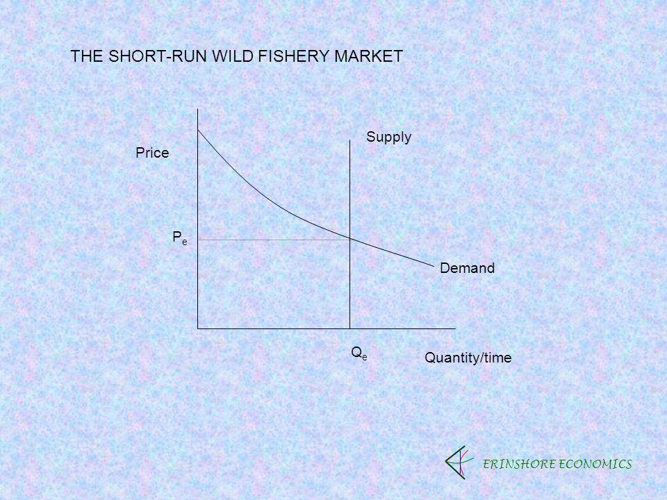 ERINSHORE ECONOMICS Price Quantity/time PePe QeQe Demand Supply THE SHORT-RUN WILD FISHERY MARKET