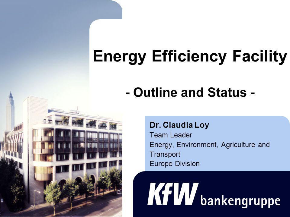 2 Energy Efficiency Facility - Overview Economic viability of energy efficiency measures Objective: financial support to investments in energy efficiency and energy savings Demand-side orientation Establishment of a suitable fund structure Endowment by bi- and multilateral donors Financing of investments (on a revolving basis) and consultancy services (grants)