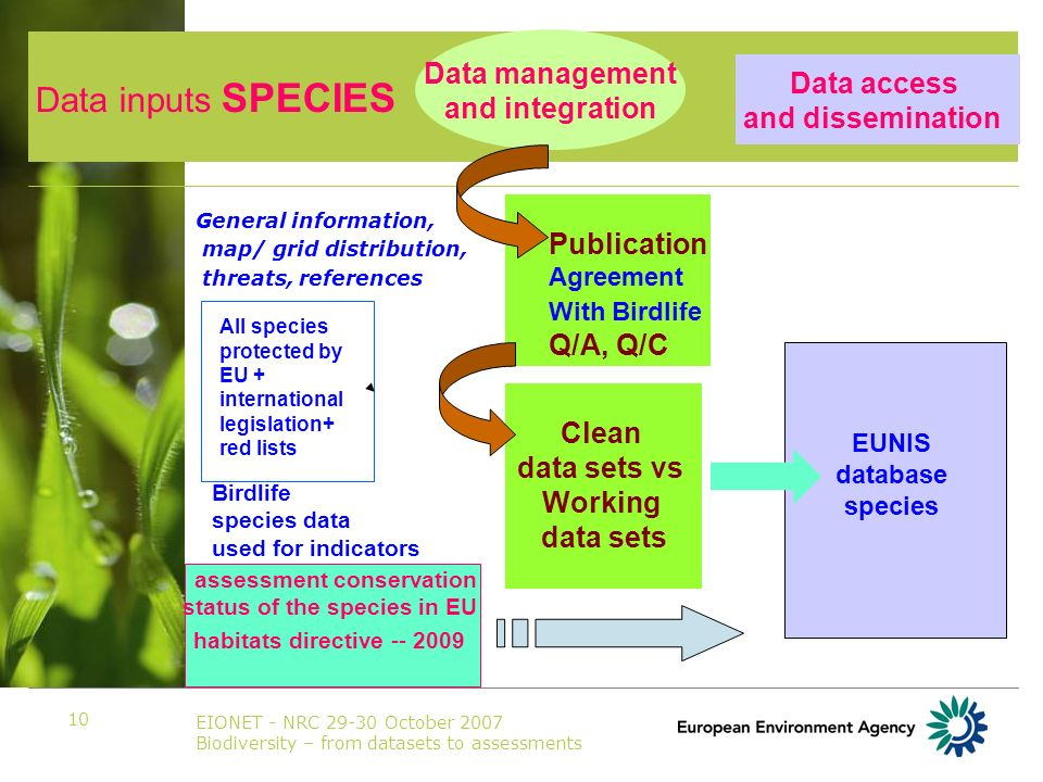EIONET - NRC 29-30 October 2007 Biodiversity – from datasets to assessments 10 General information, map/ grid distribution, threats, references Data access and dissemination Publication Agreement With Birdlife Q/A, Q/C Clean data sets vs Working data sets assessment conservation status of the species in EU habitats directive -- 2009 EUNIS database species Data inputs SPECIES Data management and integration All species protected by EU + international legislation+ red lists Birdlife species data used for indicators