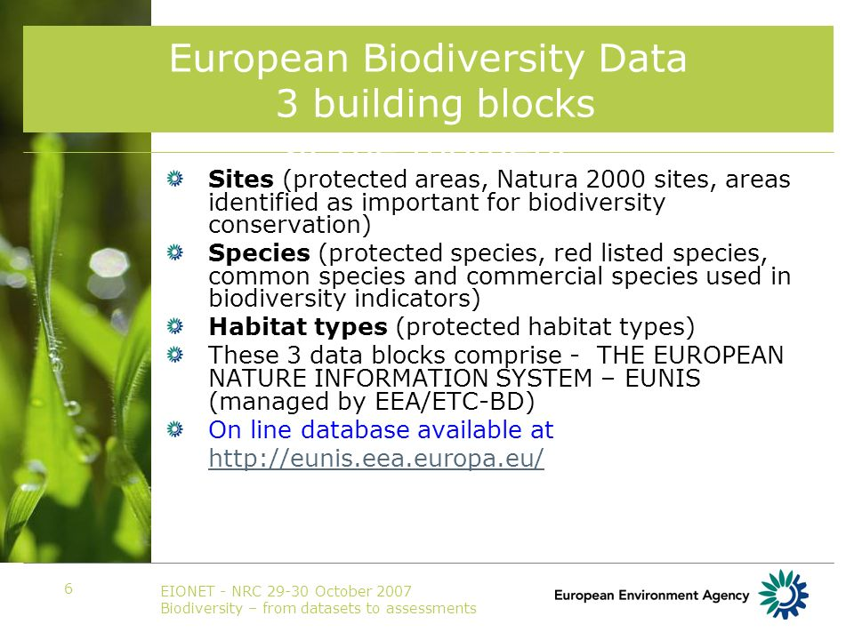 EIONET - NRC 29-30 October 2007 Biodiversity – from datasets to assessments 6 European Biodiversity Data 3 building blocks at the moment Sites (protected areas, Natura 2000 sites, areas identified as important for biodiversity conservation) Species (protected species, red listed species, common species and commercial species used in biodiversity indicators) Habitat types (protected habitat types) These 3 data blocks comprise - THE EUROPEAN NATURE INFORMATION SYSTEM – EUNIS (managed by EEA/ETC-BD) On line database available at http://eunis.eea.europa.eu/