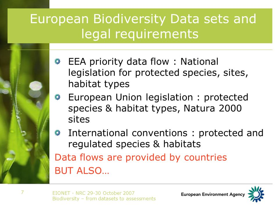 EIONET - NRC 29-30 October 2007 Biodiversity – from datasets to assessments 7 European Biodiversity Data sets and legal requirements EEA priority data flow : National legislation for protected species, sites, habitat types European Union legislation : protected species & habitat types, Natura 2000 sites International conventions : protected and regulated species & habitats Data flows are provided by countries BUT ALSO…