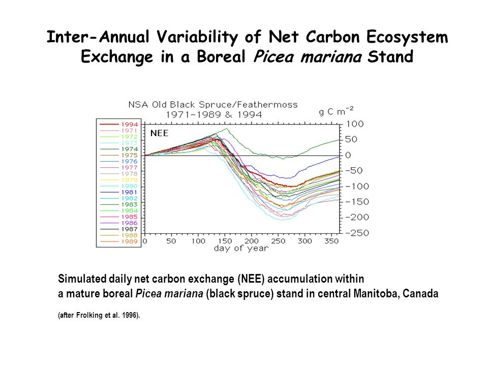 Simulated daily net carbon exchange (NEE) accumulation within a mature boreal Picea mariana (black spruce) stand in central Manitoba, Canada (after Frolking et al.
