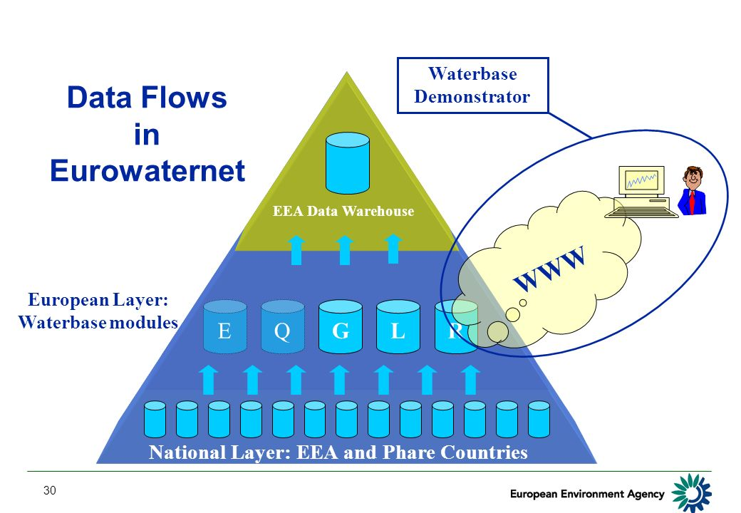 30 National Layer: EEA and Phare Countries EEA Data Warehouse GLREQ European Layer: Waterbase modules WWW Waterbase Demonstrator Data Flows in Eurowaternet