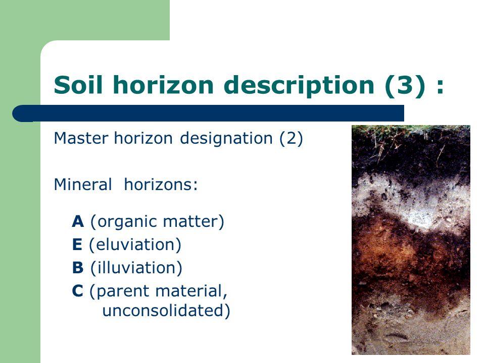 Soil horizon description (3) : Master horizon designation (2) Mineral horizons: A (organic matter) E (eluviation) B (illuviation) C (parent material,