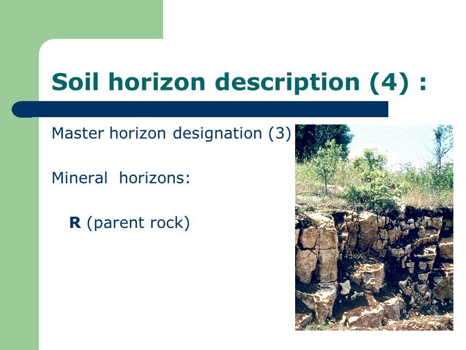 Soil horizon description (4) : Master horizon designation (3) Mineral horizons: R (parent rock)