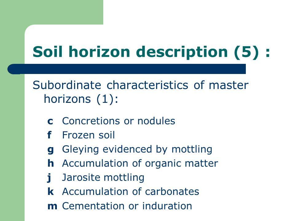 Soil horizon description (5) : Subordinate characteristics of master horizons (1): cConcretions or nodules fFrozen soil gGleying evidenced by mottling
