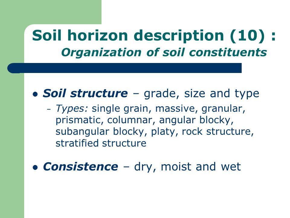 Soil horizon description (10) : Organization of soil constituents Soil structure – grade, size and type – Types: single grain, massive, granular, pris