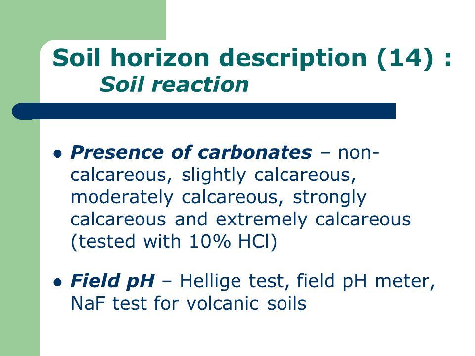 Soil horizon description (14) : Soil reaction Presence of carbonates – non- calcareous, slightly calcareous, moderately calcareous, strongly calcareou
