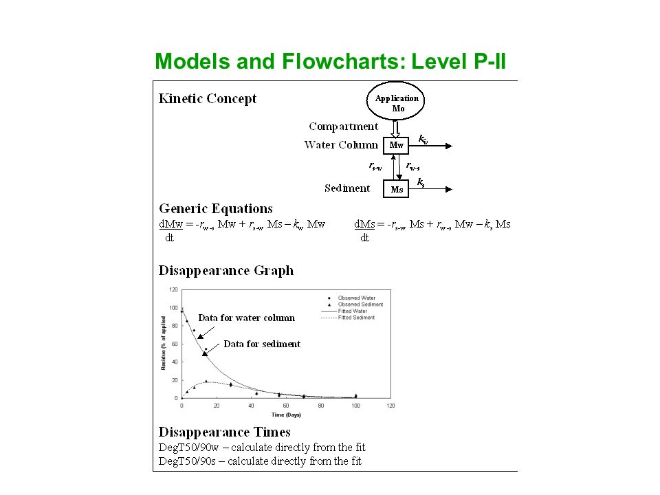 Models and Flowcharts: Level P-II