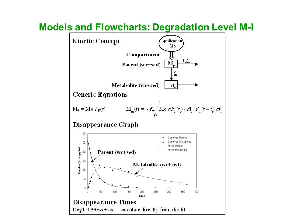 Models and Flowcharts: Degradation Level M-I