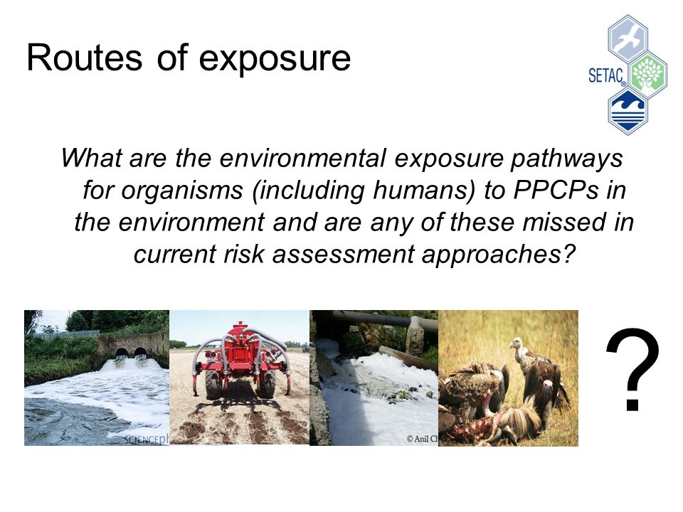 Routes of exposure What are the environmental exposure pathways for organisms (including humans) to PPCPs in the environment and are any of these missed in current risk assessment approaches.