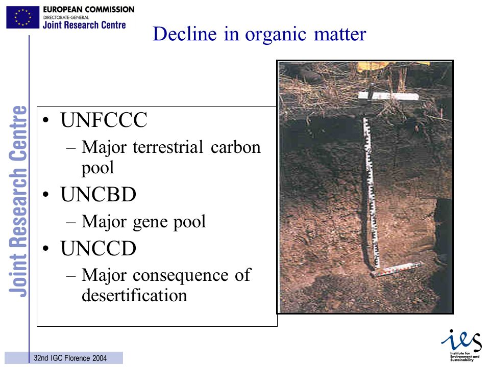 21 32nd IGC Florence 2004 Decline in organic matter UNFCCC –Major terrestrial carbon pool UNCBD –Major gene pool UNCCD –Major consequence of desertification