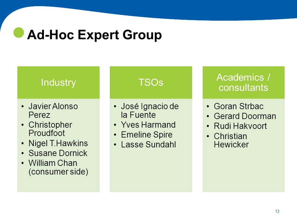 13 Ad-Hoc Expert Group Industry Javier Alonso Perez Christopher Proudfoot Nigel T.Hawkins Susane Dornick William Chan (consumer side) TSOs José Ignaci