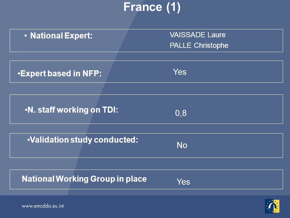 France (1) National Expert: VAISSADE Laure PALLE Christophe No National Working Group in place Validation study conducted: N. staff working on TDI: 0,