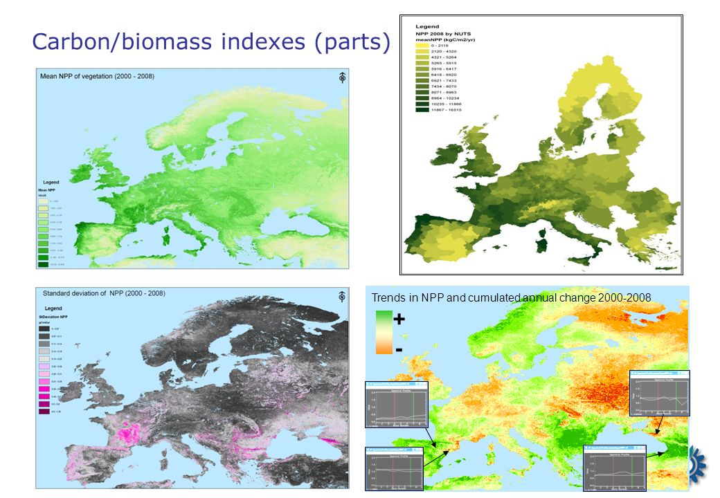 Carbon/biomass indexes (parts) Trends in NPP and cumulated annual change 2000-2008 + -