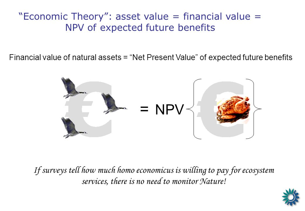 Financial value of natural assets = Net Present Value of expected future benefits = NPV If surveys tell how much homo economicus is willing to pay for